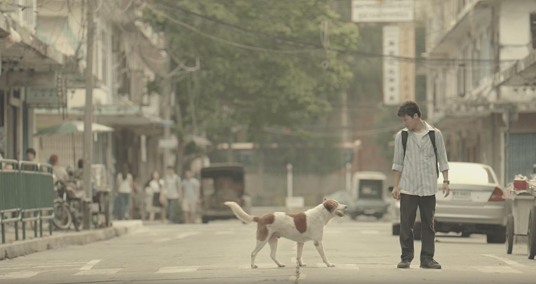 Bí Mật Của Những Viral Video, TVC Quảng Cáo Thái Lan